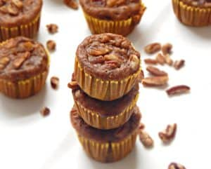 Flourless Banana Blender Muffins