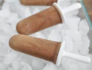 Double Chocolate Sea Salt Fudgesicles