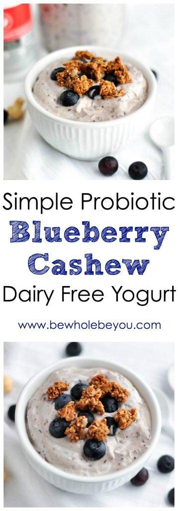 Simple Probiotic Blueberry Cashew Dairy Free Yogurt