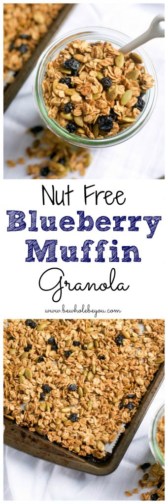 Nut Free Blueberry Muffin Granola.