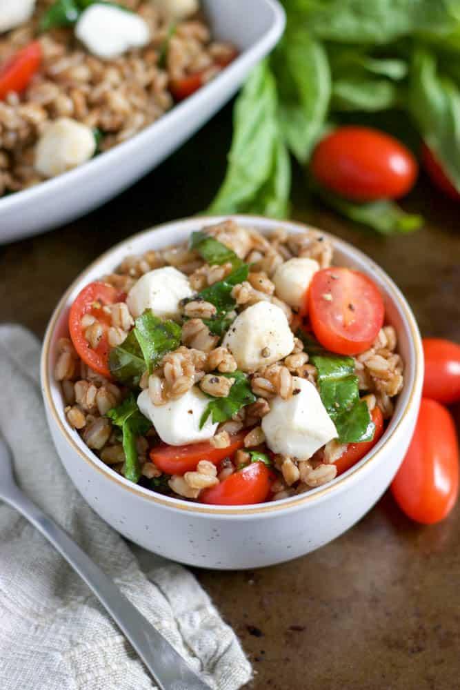 Tomato, basil and mozzarella farro salad in bowl.