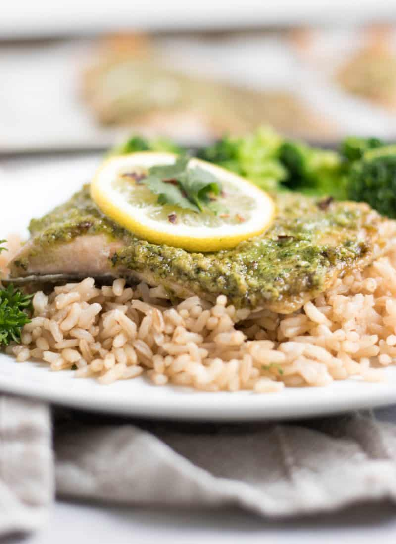 Baked rainbow trout on plate with rice and cilantro pesto.