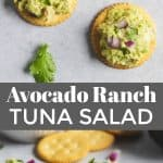 Avocado tuna salad on crackers with onion and cilantro