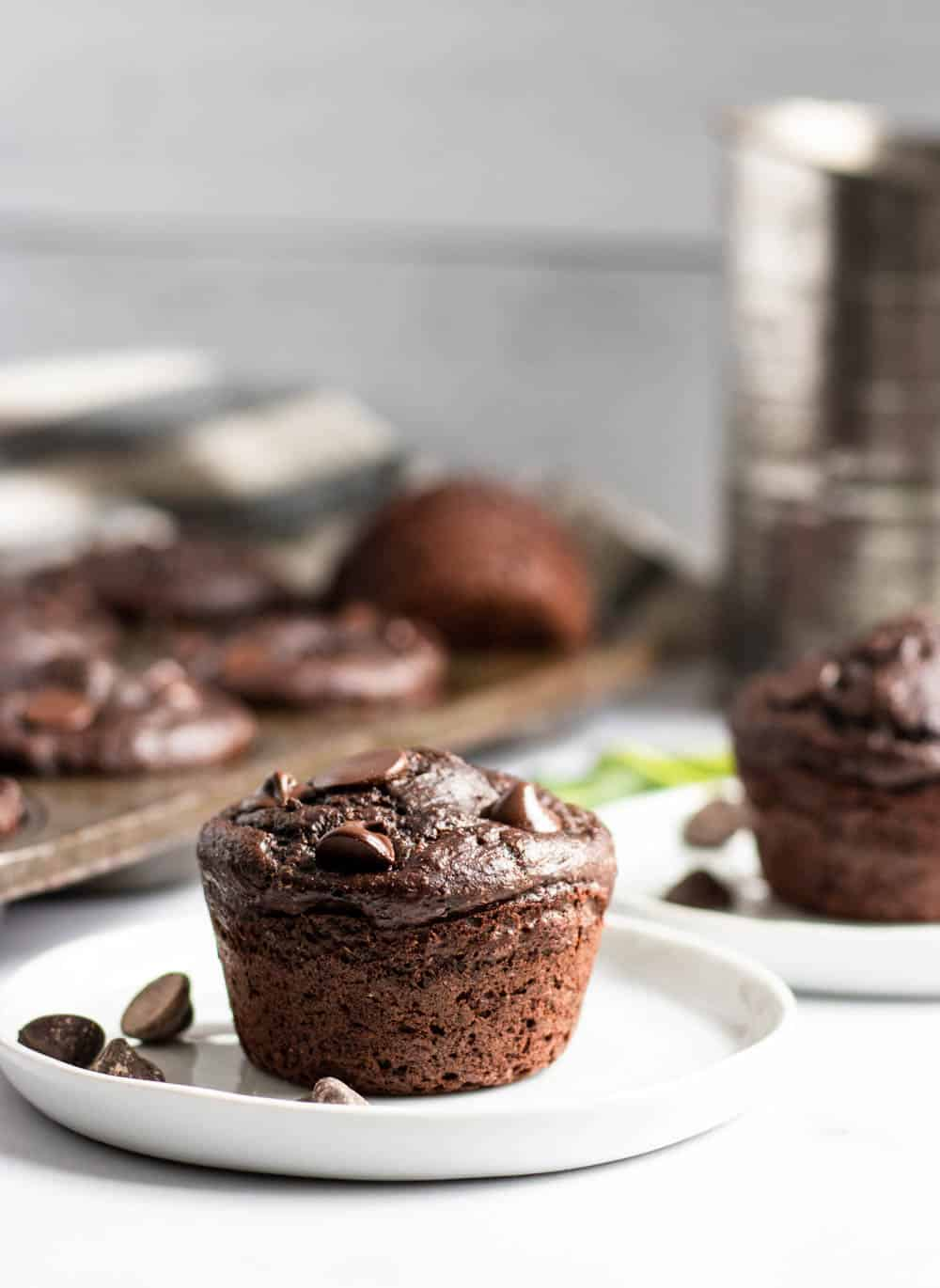 Chocolate muffin on white plate with extra chocolate chips on plate.