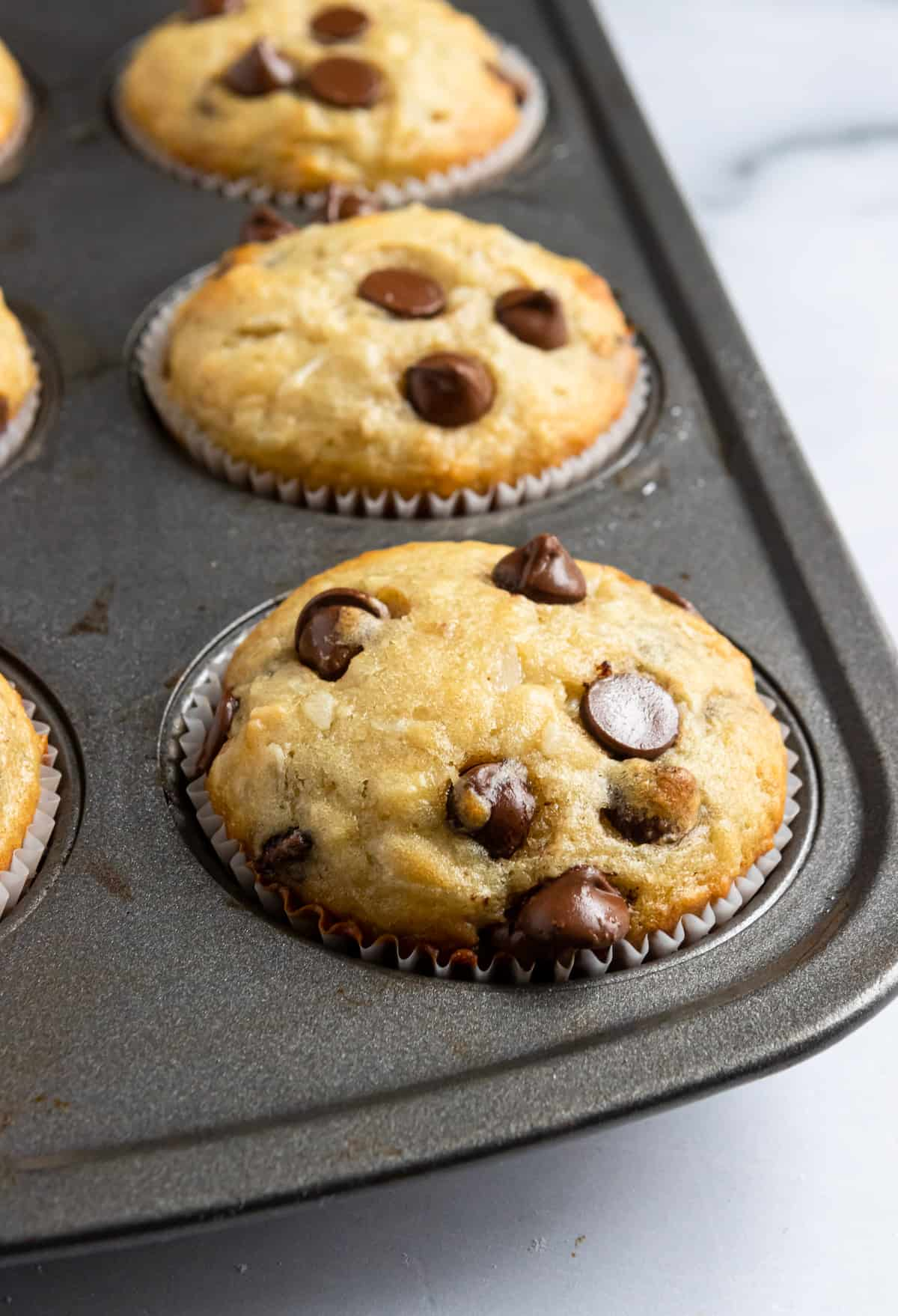 Fresh muffins in muffin tin.