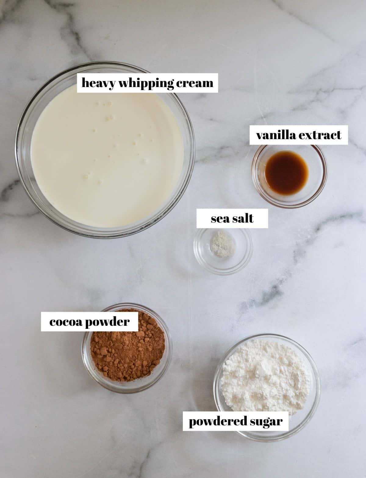 Cream, cocoa, powdered sugar, vanilla and salt on a counter and labeled.