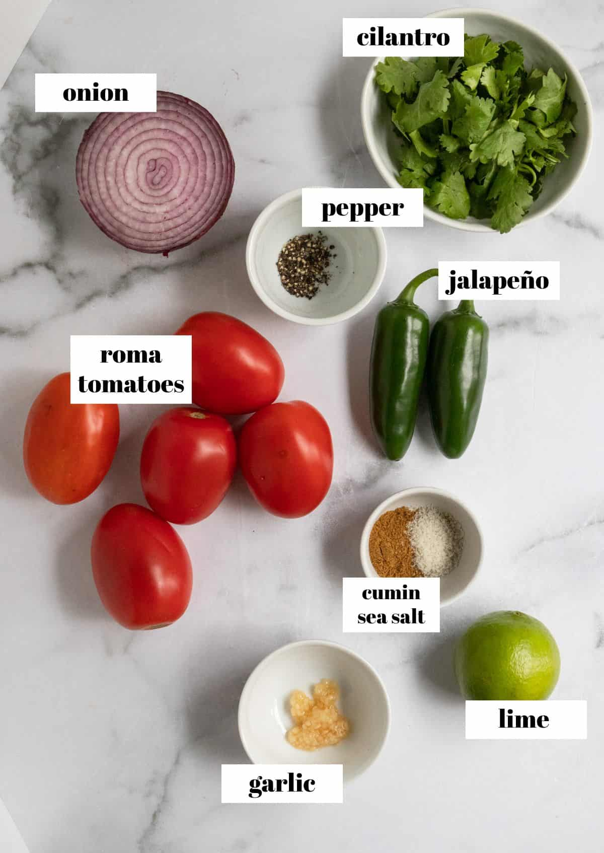 Ingredients to make salsa on counter labeled.