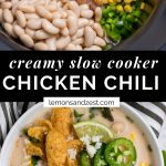 Chicken, corn beans, onion and ingredients in slow cooker and chili in bowl.