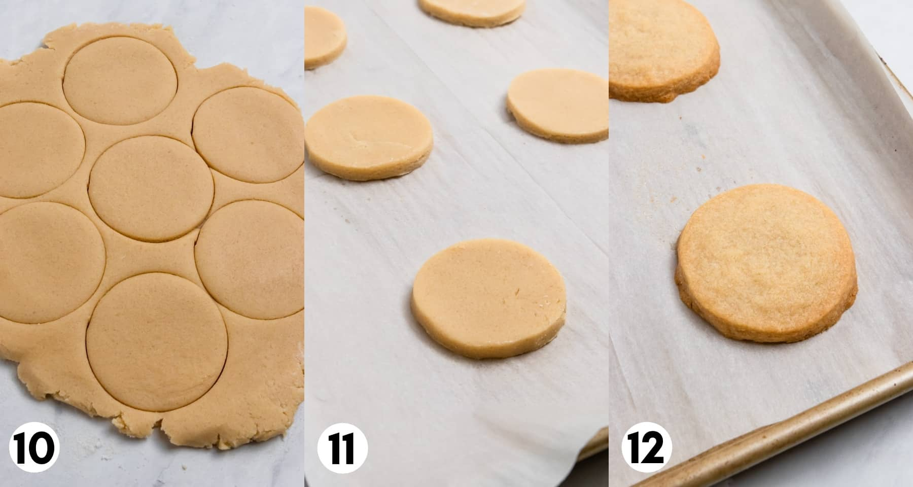 Rolled cookie dough with cookie cutter cut outs on parchment.