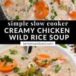 Crockpot Chicken and rice soup in slow cooker and in bowl.