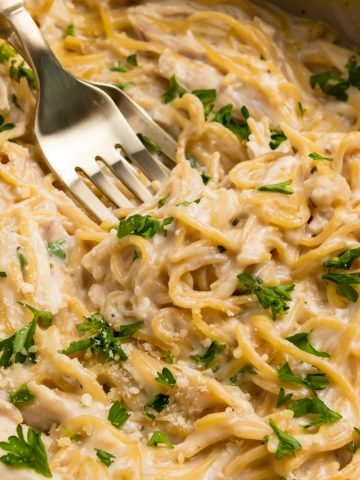 Chicken alfredo in pan with two forks.