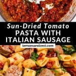 Sun-dried tomato sauce in food processor and pasta.